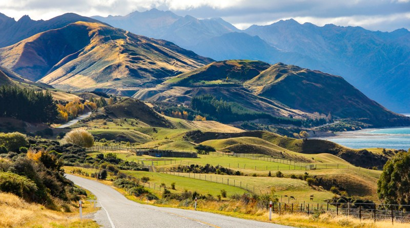 The Great New Zealand Road-Trip