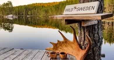 Exploring Wild Sweden