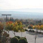 Thanksgiving; San Jose Gurdwara; Nothing Bundt Cakes; In-N-Out Burger; Le Boulanger (San Jose, California)