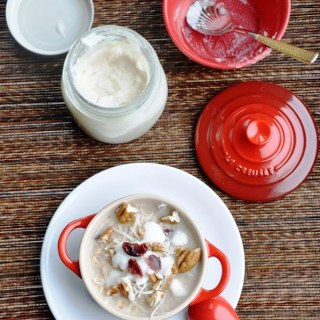 Winter Coconut Cranberry Oatmeal