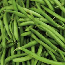 Local French beans