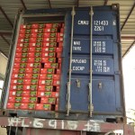 ALDA Tomato Paste Going to Gambia
