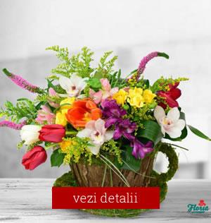 Buchet de flori pentru 8 martie cu lalele