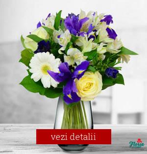Buchet de flori pentru 8 martie cu 4 iris mov, 3 alstroemeria albe, 3 minigerbera albe, 3 trandafiri albi si 3 anemone mov.