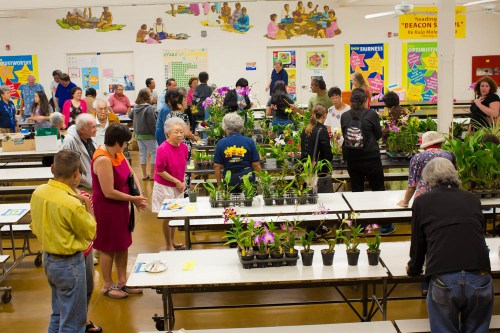 Last year's silent auction was well attended. Participants left with boxes of orchid plants and baked goods.