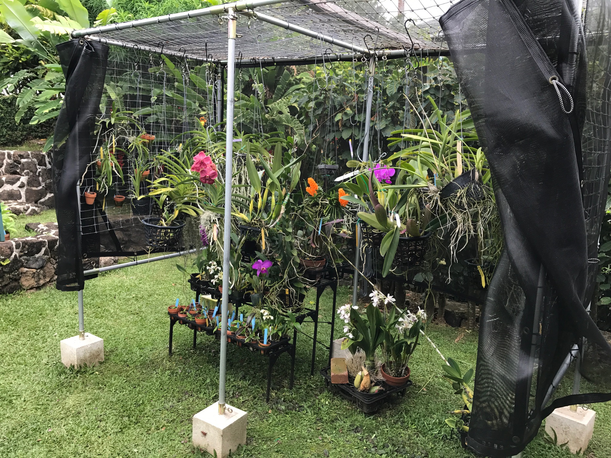 Building A Shade House For Orchids