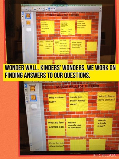 Wonder wall Kinders' wonders. We work on finding answers to our questions.