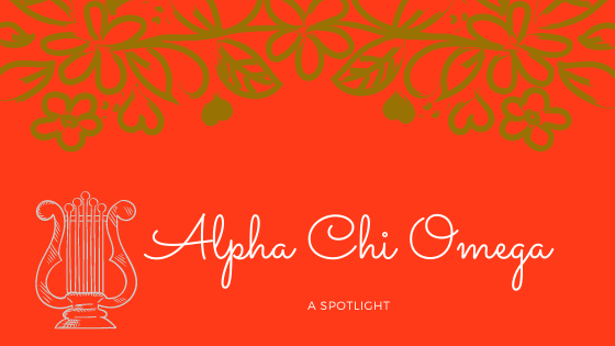 spotlight on alpha chi omega sorority
