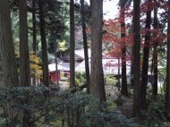 p_shikinoyama1111_08b
