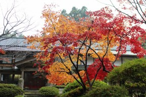 p_shikinoyama1411_05