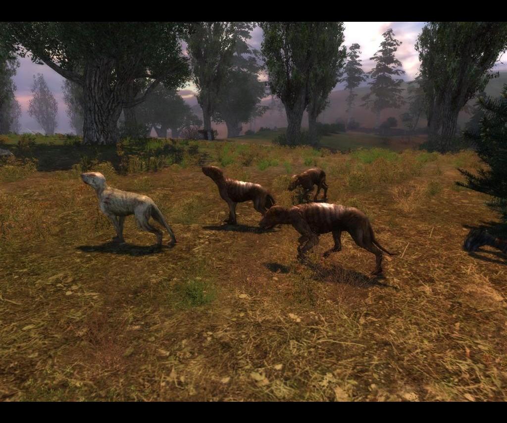 STALKER Shadow Of Chernobyl Screenshots Hooked Gamers