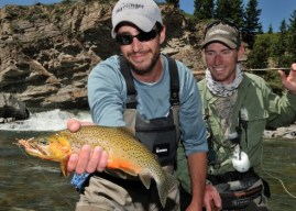 A Guide's Guide to Fly Fishing on the Famous Bow River