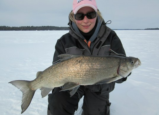 Planning for Back Country Ice Fishing!