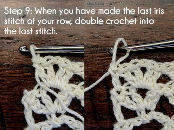 Text: Step 9: When you have made the last iris stitch of your row, double crochet into the last stitch.