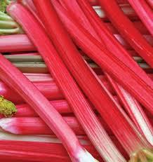 Rhubarb 'Canada Red'