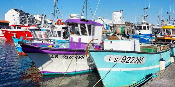 Conciergerie à Brétignolles sur Mer