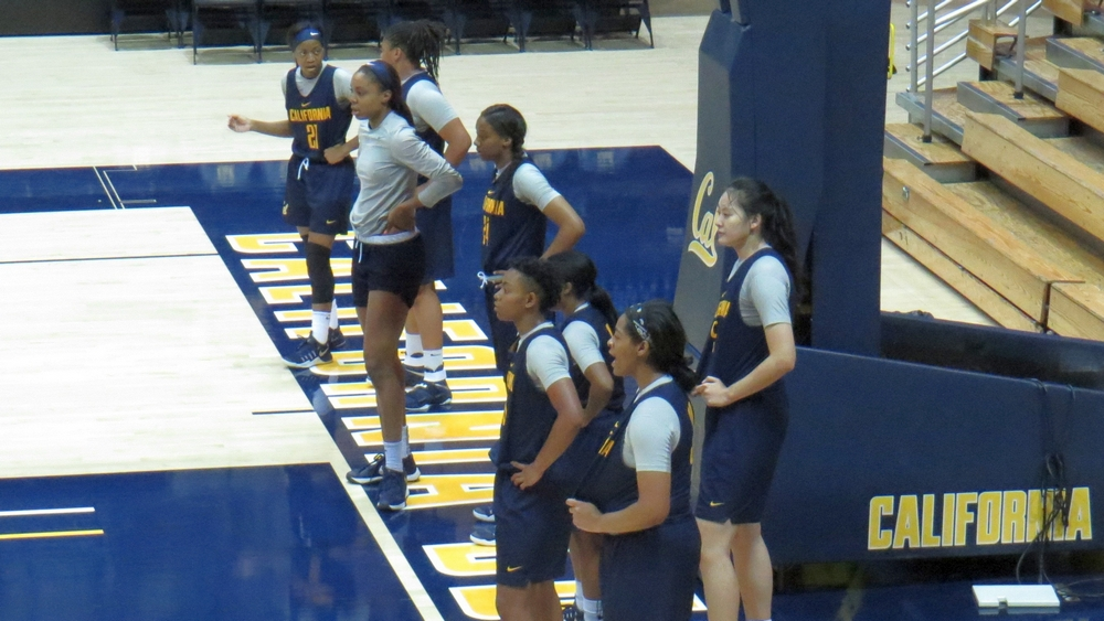 Cal Golden Bears hungry and motivated for 2016-17 with experience and talented youth