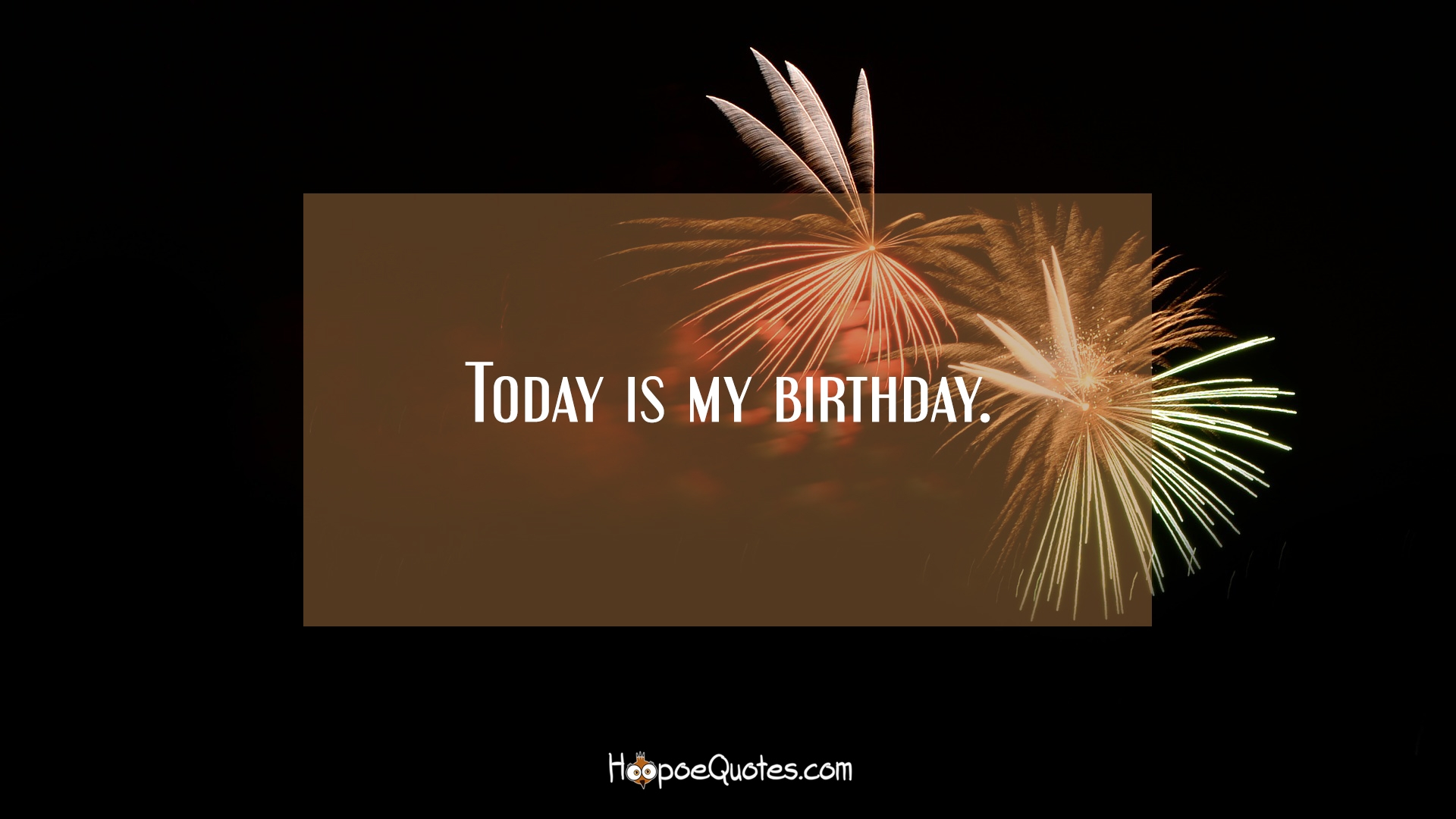 Today Is My Birthday HoopoeQuotes