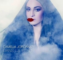 camelia-jordana Top Albums Hop Blog 2014