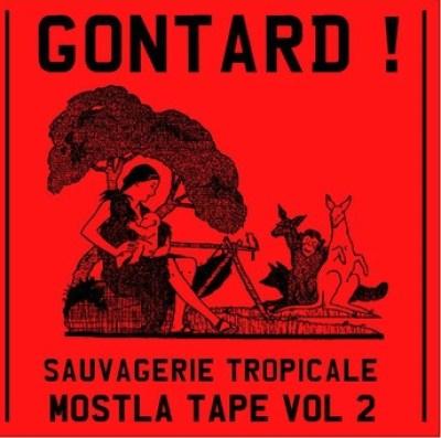 gontard-sauvagerie-tropicale Les meilleurs albums de la décennie 2010-2019