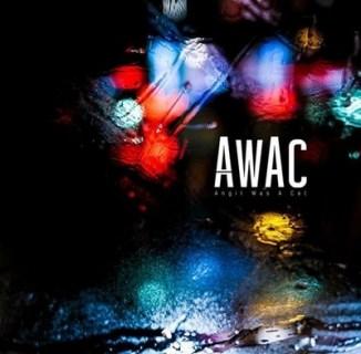 awac-angil-was-a-cat Les sorties d'albums pop, rock, electro, rap du 15 janvier 2016