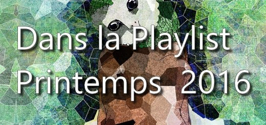 Dans la playlist Hop Blog - printemps 2016