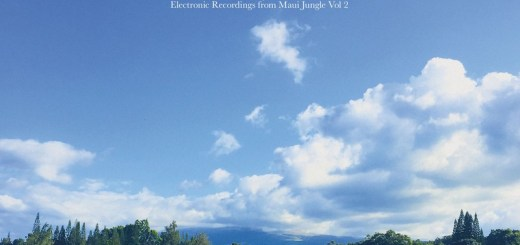 Anthony Child – Electronic Recordings from Maui Jungle Vol. 2