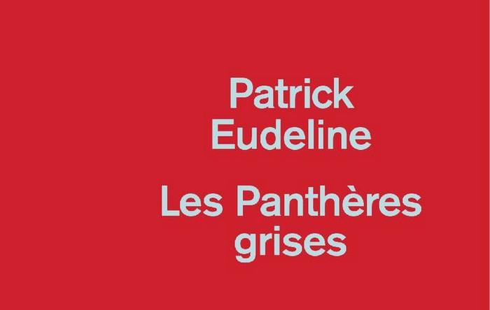 Les_pantheres_grises Les Panthères grises - Patrick Eudeline