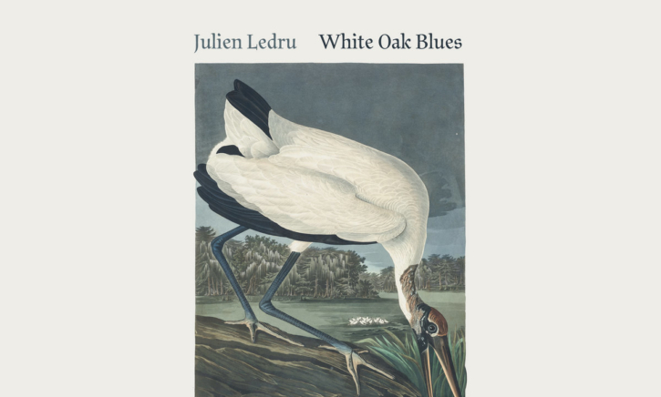 Julien-Ledru-e1589116364615 Julien Ledru – White Oak Blues (2020)