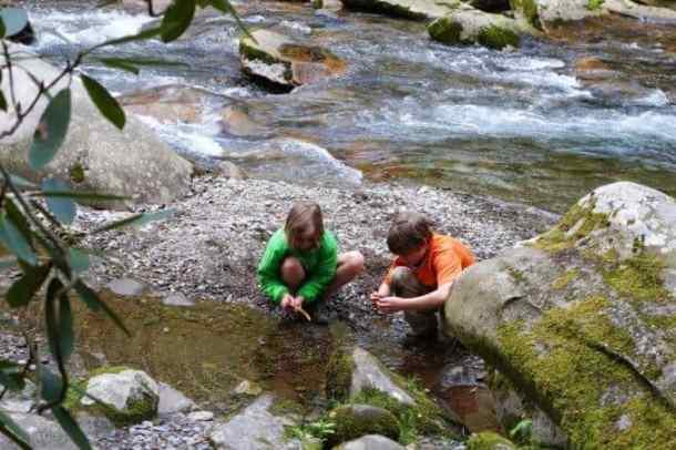 Kids in stream