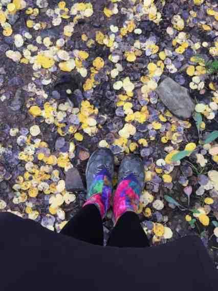 Aspen leaves on trail