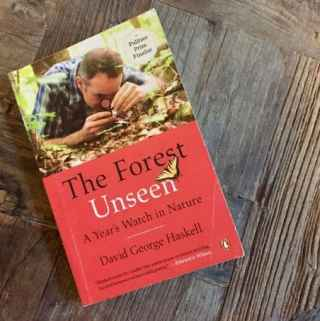 Book Review: The Forest Unseen: A Year's Watch in Nature by David Haskell