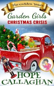 Brand New Christmas Cozy Mystery Book