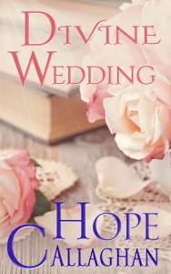 Brand New Christian Fiction Book - Divine Wedding