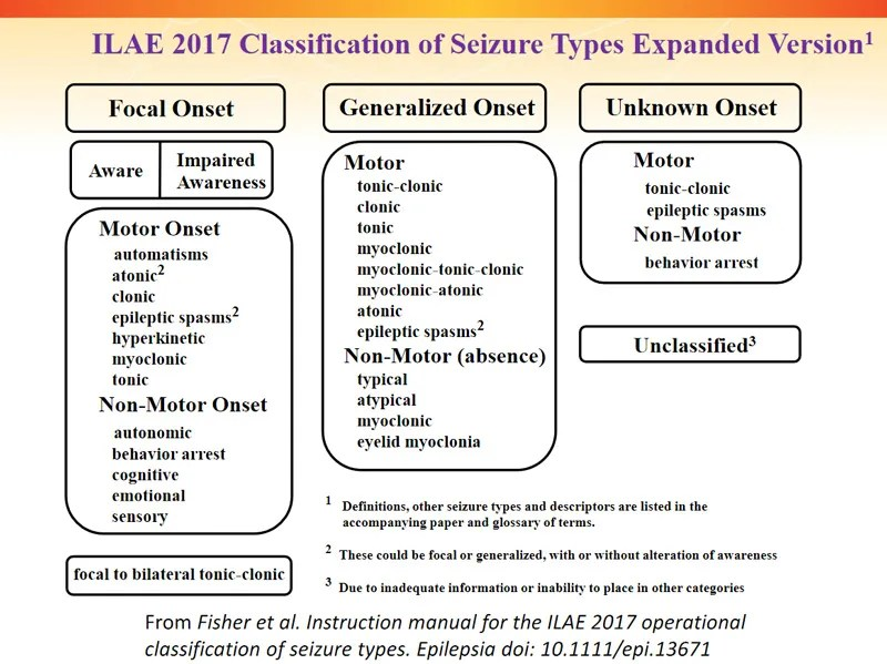 ILAE 2017 Classification of Seizure Types Expanded Version