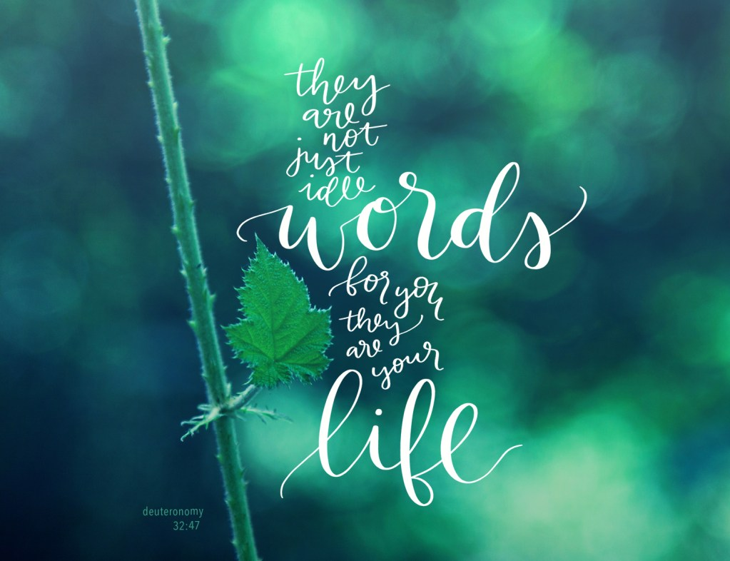 Not Just Idle Words | Scripture Art | Hope For Life Biblical Counseling