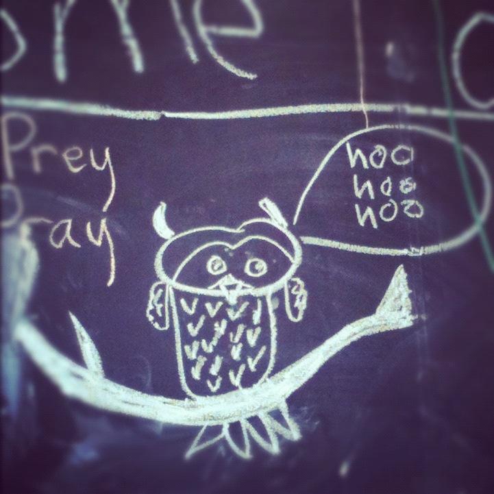 Owl Chalkboard Drawing