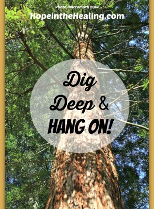 Dig Deep and Hang On