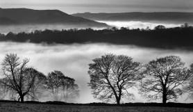 4 Peak Mists.