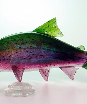 Regular Rainbow Trout
