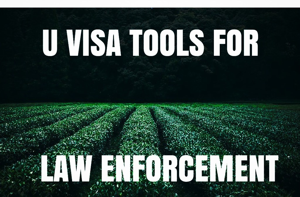 U Visa Update: DHS Releases Updated Law Enforcement Guide on U and T Visas