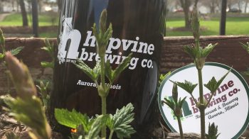 HopYard-Howler, Hops, and Sticker.2
