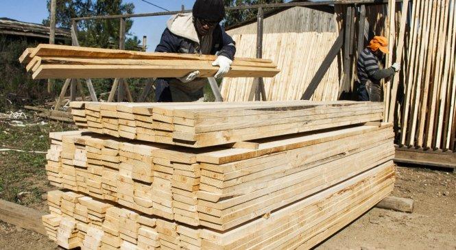 Pequeños y medianos madereros reclaman audiencia con autoridades