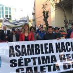 """Senadora Rincón por Ley de Jibia: """"Resguarda la sustentabilidad y la de los pescadores artesanales"""""""