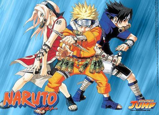 Naruto 狐忍