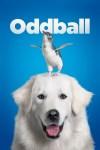 Oddball 企鵝小守護