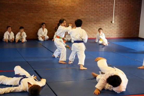 Self-defense Gabriel 2