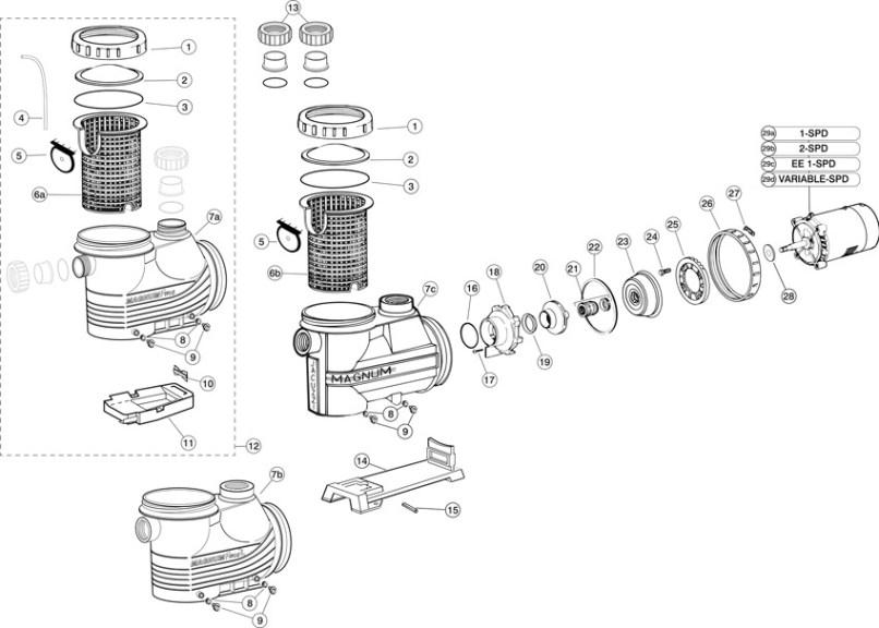 Jacuzzi Magnum Plus Pool Pump Parts Reviewmotors Co