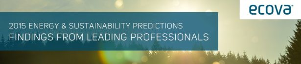 2015_energy_sustainability_predictions_report