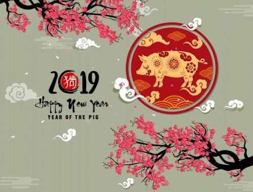 Horoscope Chinois 2019 – Nouvel année du Cochon